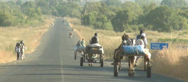 Gambija – nuo turistinio kranto iki atkampios egzotikos
