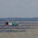 Amazonė - vaizduotę pranokstančios džiunglės ir upės