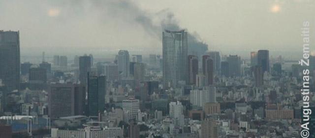 Tokijas – drebantys 37 milijonų japonų namai