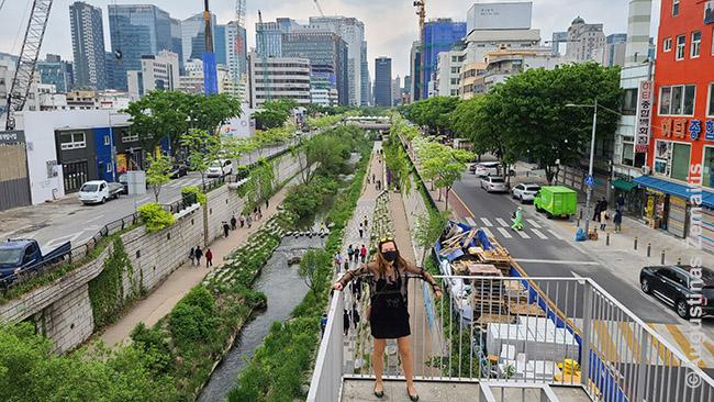 Ilgą laiką šis upelis buvo uždengtas keliu, tačiau neseniai Seulo valdžia jį nugriovė ir pavertė paupius pasivaikščiojimų erdve