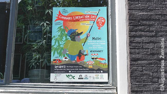 """Plakatas Amsterdame kviečia švęsti kanapių išlaisvinimo dieną. Su narkotikais susijusių plakatų mieste daug: nuo teigiamų iki """"prašome nerūkyti čia žolės"""""""