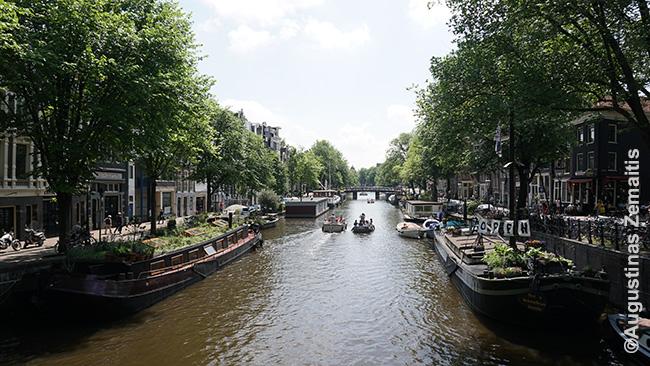 Laivai-namai Amsterdamo kanalo šonuose. Viename jų - laivo-namo muziejus