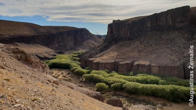 Kanjonas prie Cuava de los Manos Argentinoje. Lankytinų vietų kainos, parašytos turimoje kelių metų senumo Lonely Planet knygoje, nuo dabartinių skyrėsi kartais