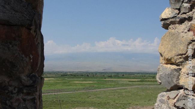 Ararato kalnas pro Chor Virapo vienuolyno mūrus