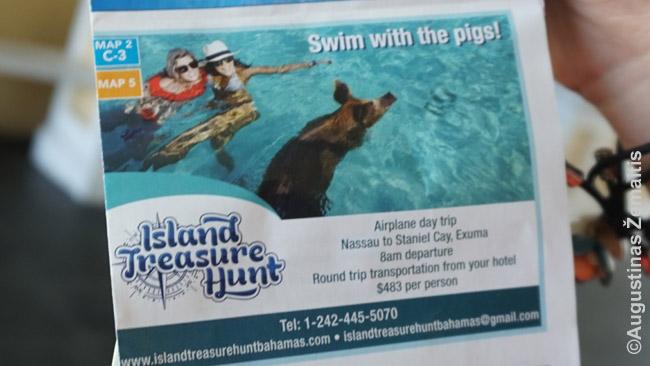 Plaukimo su kiaulėmis reklama. Ši pramoga taip išgarsėjo, kad kai kurie galvoja, jog ji galima visur Bahamuose - tačiau Nasau reklamos ir bukletai vien nuskristi ten ir atgal siūlė už 500 dolerių, nes tai atoki sala
