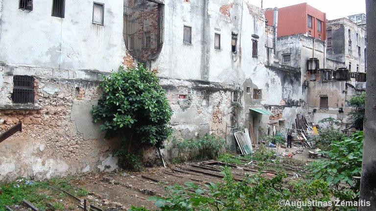 Eilinio Kubos daugiabučio kiemas pro casa particular langą - ten auginamos daržovės. Taip pamatai kitą Kubos veidą.