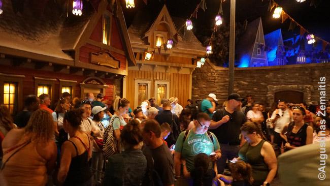 Eilėje prie Frozen atrakciono EPCOT praleidome apie valandą. Laimė, eilėse yra užsiėmimų, autentiškų vaizdų
