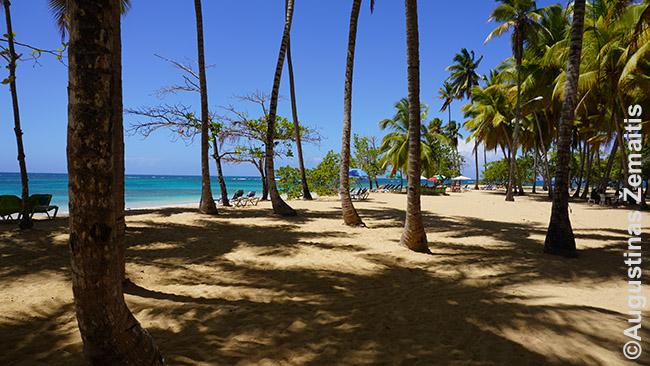 Las Terrenas paplūdimys, Samanos pusiasalis