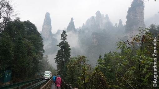 Džangdziadzie traukinukas veža link Trijų seserų uolų