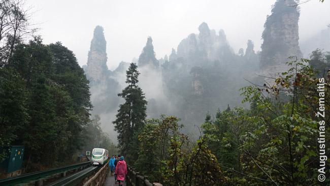Vienoje įspūdingiausių gamtinių Kinijos vietų Džangdziadzie pasivaikščiojimo takai - asfaltuoti, o tinginčius gali pavežti traukinukas