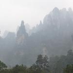 Džangdziadzie - dangų raižančių uolų miškas
