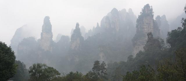 Džangdziadzie – dangų raižančių uolų miškas