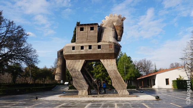 Vietinio menininko sukurtas Trojos arklys