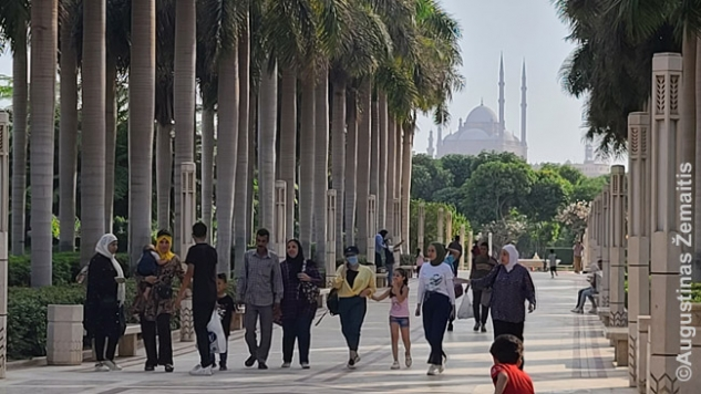 Al Azhar parke su citadelės vaizdu tolumoje