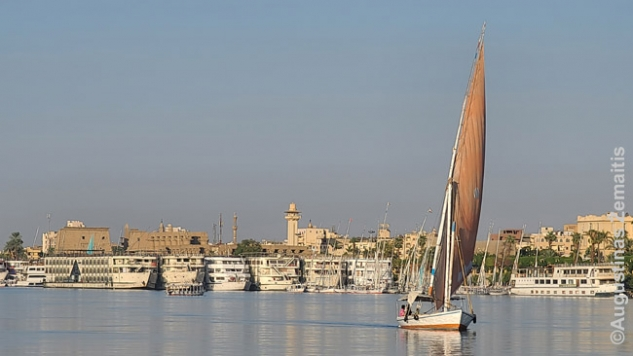 Tradicinė feluka plaukia Nilu Luksore. Tolumoje surikiuoti Nilo kruizų laivai