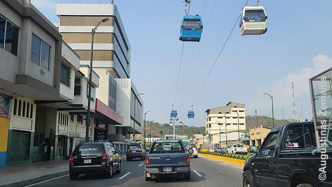 Lynų keltuvas virš gatvės Gvajakilyje
