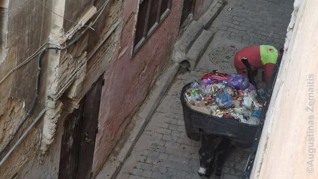 Feso šiukšlių išvežiotojas su asilu. Šiukšlės išvežamos už miesto vartų, kur visi asilai jas suverčia į konteinerį