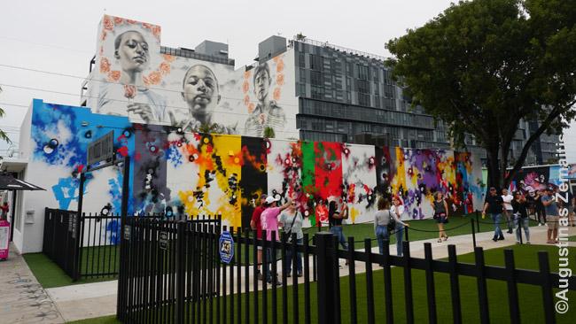 Vynvudo sienos Majamyje. Grafičiai nuolat keičiami