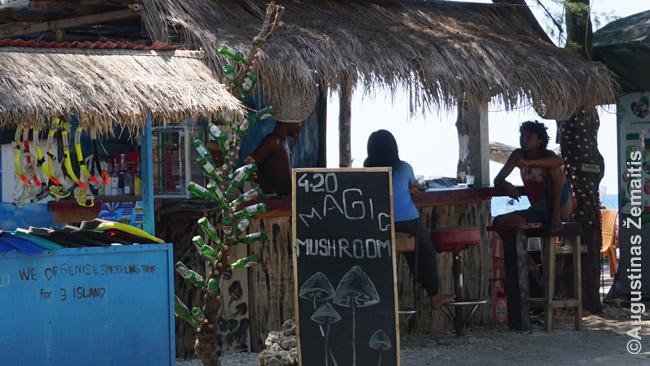 Magiškų grybukų kioskas Gilio Travangano šiaurės rytuose