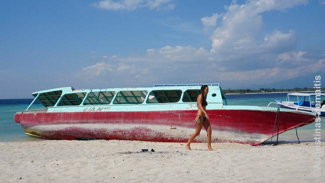Išgėrę grybukų kokteilį turistai pradeda 'kelionę' žiūrėdami panašius vaizdus. Kai kurie aplink, atrodo, jau buvo kitame pasaulyje