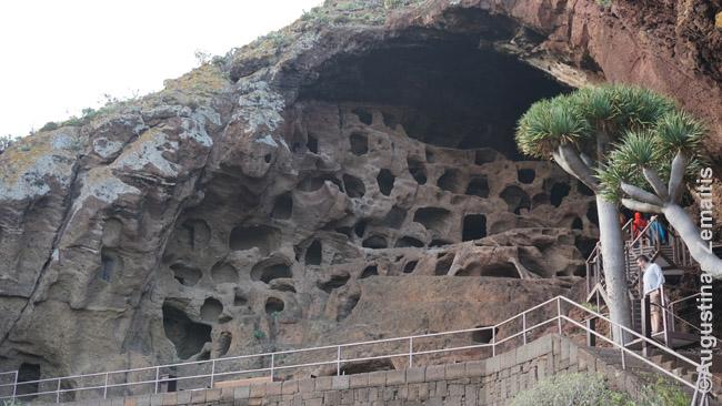 Gvančų sandėliai olose Cenobio de Valeron, Gran Kanarija - viena įspūdingiausių gvančų lankytinų vietų