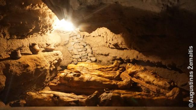 Pavzydys, kaip olose buvo išdėliotos mumijos Gajadekės muziejuje Gran Kanarijoje