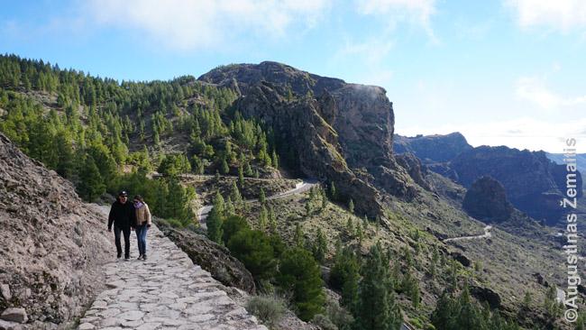 Takas pasivaikščiojimui Gran Kanarijos kalnuose