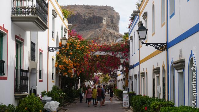 Tradicinės architektūros įkvėptas Puerto de Mogan turistinis miestelis Gran Kanarijoje