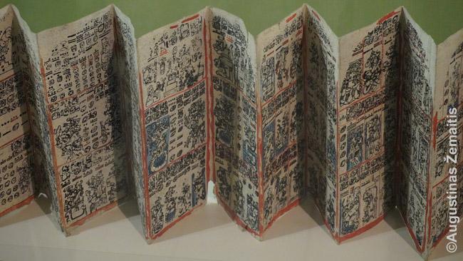 Dresdeno kodeksas - viena vos kelių išlikusių majų knygų (kopija)