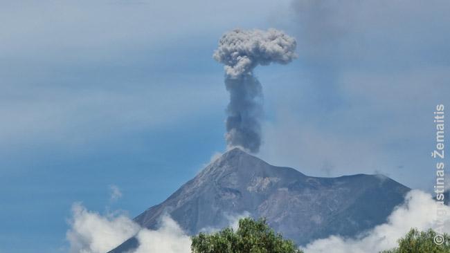 Eilinis Fuego išsiveržimas - ilgainiui pradedi nekreipti dėmesio