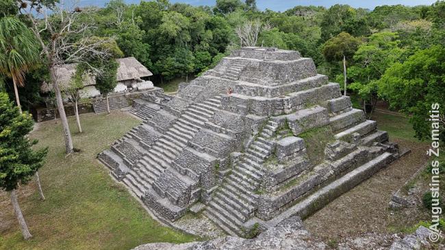 Majų piramidė žvelgiant nuo gretimos piramidės viršūnės