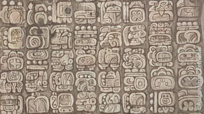 Majų raštas