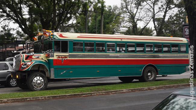 Iš mokyklos autobuso perdarytas autobusas