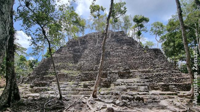 Pusiau atkovota nuo džiunglių La Dantos viršūnė Miradore