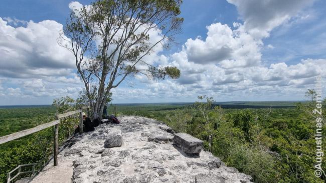 La Dantos viršūnėje Miradore viršum džiunglių