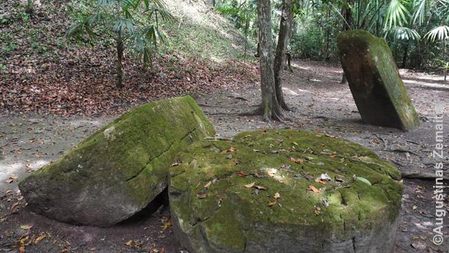 Majų altorių liekanos