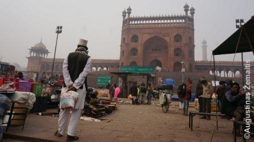 Indija - viena skurdžiausių ir kartu viena įspūdingiausių pasaulio šalių. Nuotraukoje - centrinė Delio mečetė