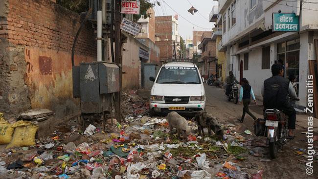 Kai kuriose šalyse labai sunku laikytis ekologijos. Štai viename Indijos viešbutyje išmetėme šiukšles į šiukšliadėžę. Rytą jas radome viduryje gatvės: viešbučio kambarinė tiesiog taip sutvarkė kambarį, viską iš šiukšliadėžės šveitė į gatvės vidurį