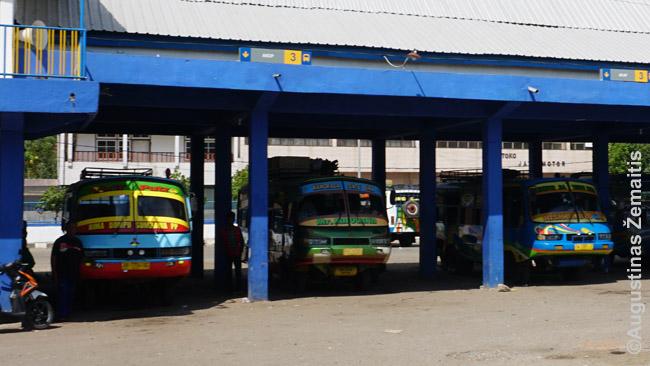 Bimos miesto autobusų stotyje - seni spalvingi autobusai. Tokie - patys pigiausi