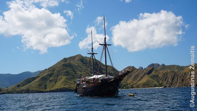 Nardymo laivas prie Komodo salos - nardytojai tokiuose nakvoja, o dienomis nardo