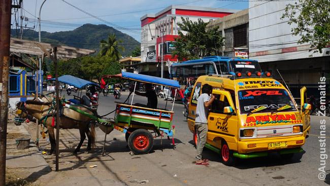 Atokaus Bimos miesto transportas. Čia dar itin populiarios karietos. Dešinėje - bemo mikrautobusas