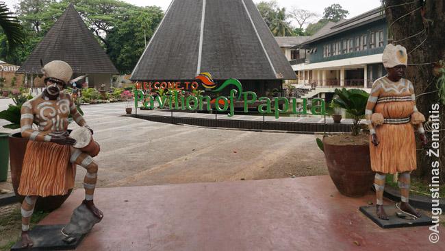 """Indonezija tokia įvairi, kad vienose jos pusėse kitų pusių tradicijos gali būti net cenzūruojamos. Pvz. vaidinami papuasus Balio šokėjai penių užmautus """"dėjosi"""" ant štai tokių sijonų."""