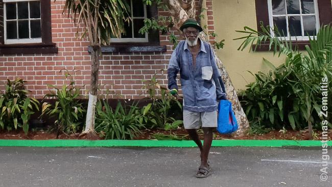 Jamaikietis