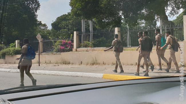Jamaikos vaikai Kingstone