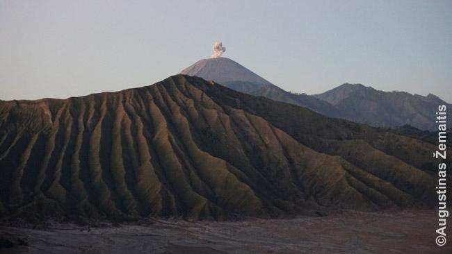 Dūmais besispjaudantis vulkanas prie Bromo