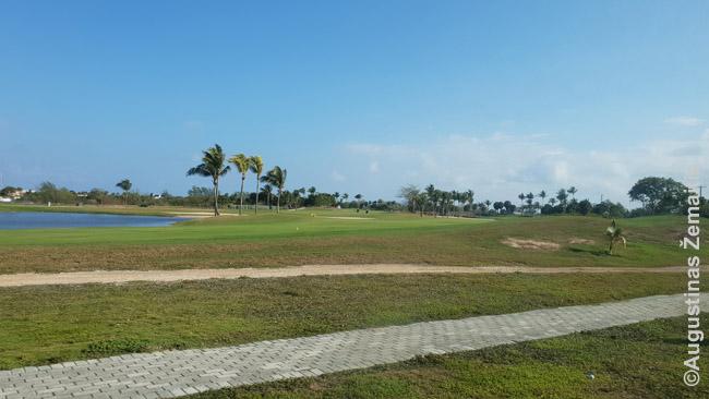 Išpuoselėti Kaimanų golfo laukai