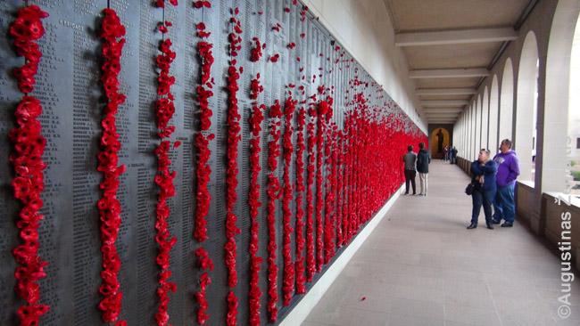 Kanberos karo memoriale, kur prie karų aukų vardų giminaičiai deda aguonas