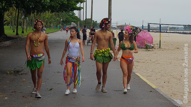 Karnavalo metu milijonai Rio de Žaneiro gyventojų ima rengtis beprotiškai, ultraseksualiai, net idiotiškai - viskas tinka!