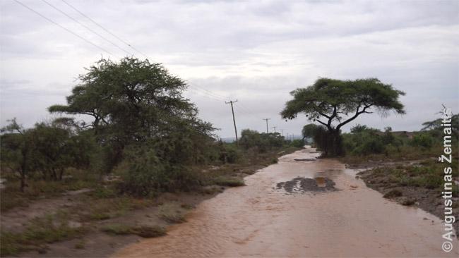 Tekančiomis upėmis po lietaus virtęs kelias Amboselio nacionalinio parko prieigose