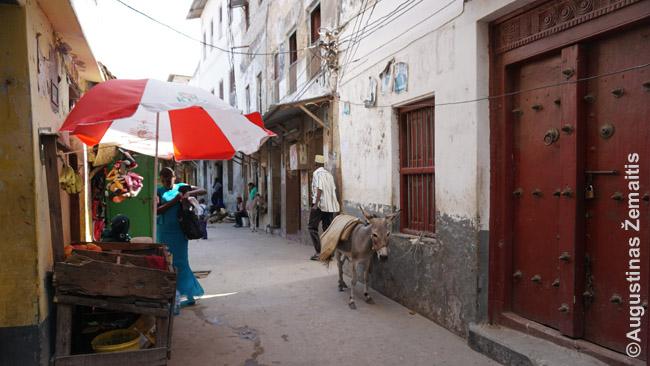 Užnugarinė Lamu gatvelė